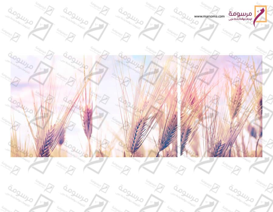 تابلوه مودرن - حقل- 3 قطع  خشب - 50x120