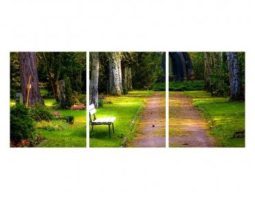 تابلوه مودرن - طريق اشجار- 3 قطع  خشب - 50x120