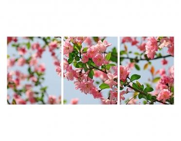 تابلوه مودرن - زهور- 3 قطع -  خشب - 50x120