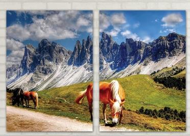 تابلوه مودرن - حصان- 2 قطعة - 100*70