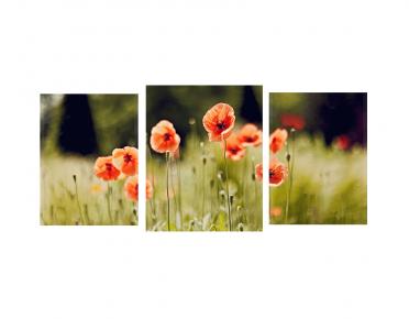 تابلوه مودرن .. زهور - 3 قطع خشبي - 100*50 سم