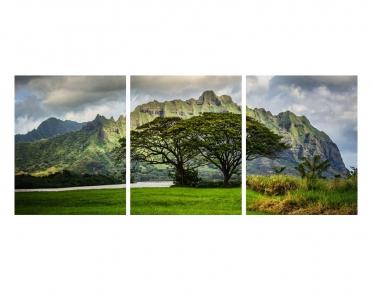 تابلوه مودرن - منظر طبيعي- 3 قطع  خشب - 50x120
