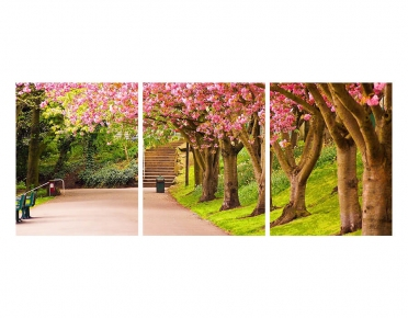 تابلوه مودرن -اشجار- 3 قطع  خشب - 50x120