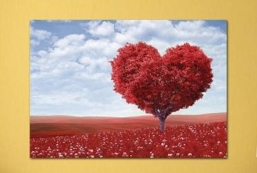 شجرة قلب